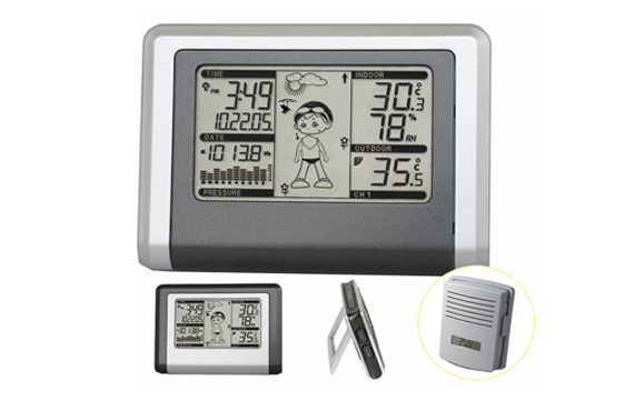 WH1270 Wireless Weather Station with Outdoor temperature and humidity